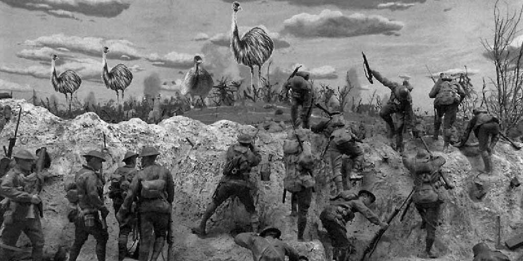 Tentara Perang Lawan Burung Emu