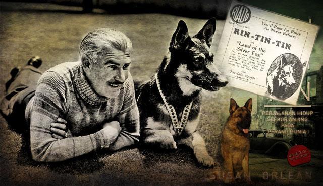 Rin Tin Tin, Anjing Kandidat Oscar