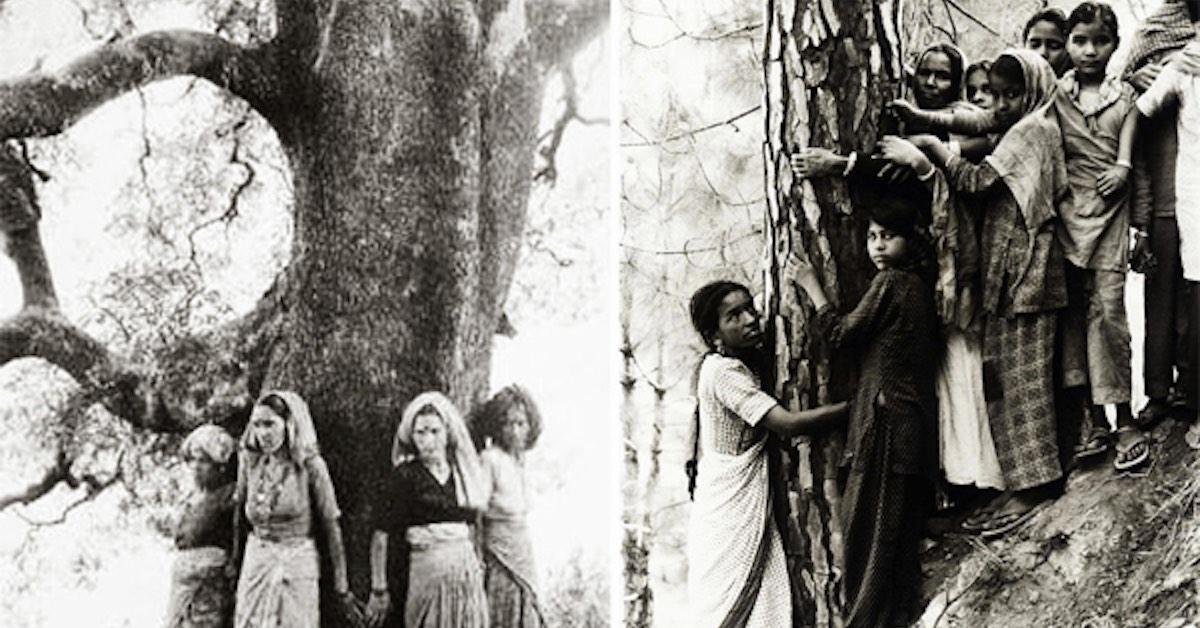 Gerakan Memeluk Pohon
