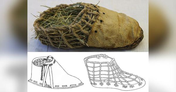 Sepatu Oetzi, sumber : historia.id